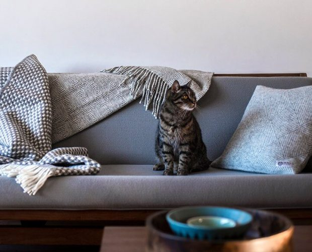 Changing Spaces With Cushions